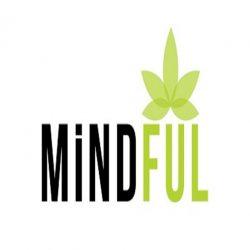 large_mindfull